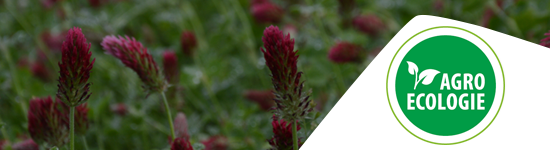 Formations en Agro-Ecologie proposées par les Chambres d'agriculture de Normandie